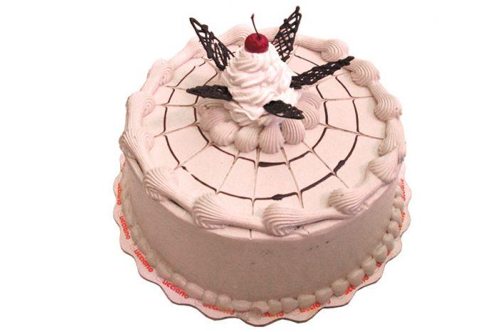 Arequipa Torta Moka
